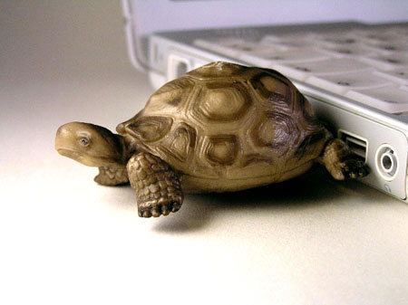 usb turtle